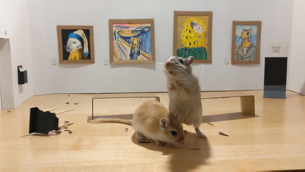 Gerbil Art Gallery by Filippo Lorenzin & Marianna Benetti