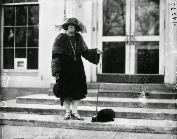 Marzo 1922 - una donna con una puzzola come animale domestico visita la Casa Bianca