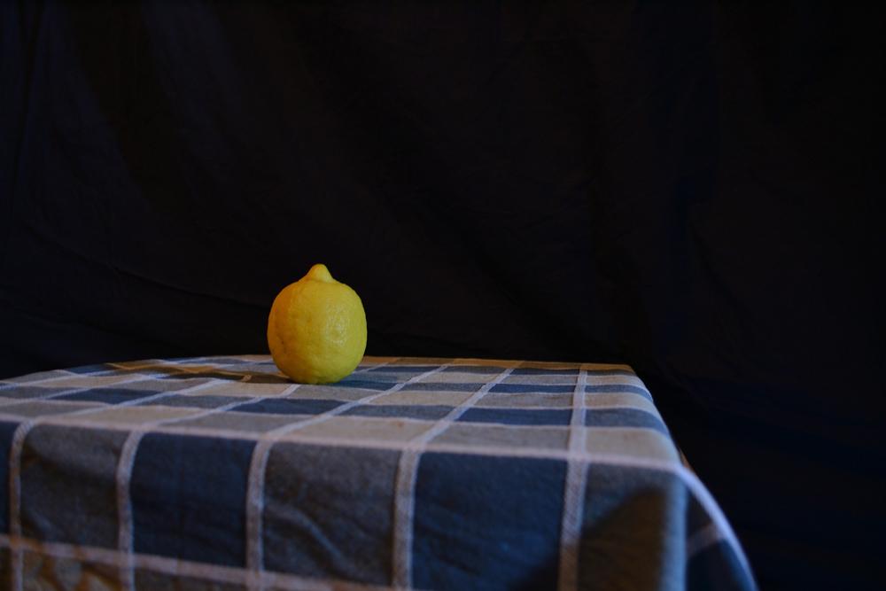 Natura sola - La solitudine del limone. Fotografia di Barbara Picci