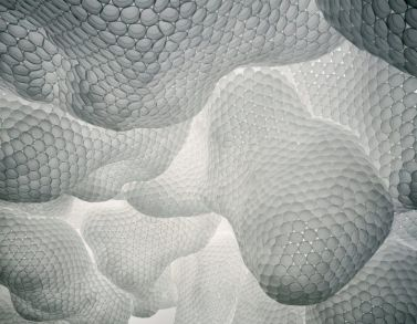 Tara Donovan, Untitled (Styrofoam cups), 2003/2008, styrofoam cups and glue, installation dimensions variable © Tara Donovan