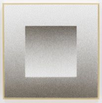 "Tara Donovan, Drawing (Pins), 2012, gatorboard, paint, and nickel-plated steel pins, 36"" x 36"" x 2-1/2"" (91.4 cm x 91.4 cm x 6.4 cm) © Tara Donovan"