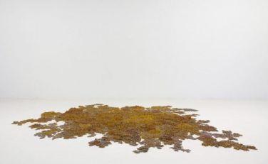 "Tara Donovan, Colony, 2005, pencils, 4"" x 136"" x 113-1/2"" (10.2 cm x 345.4 cm x 288.3 cm), overall installed © Tara Donovan"