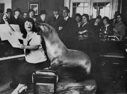Il signor Macfrisco, il leone marino che canta, fa una lezione di canto, 1926