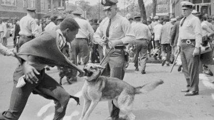 """La polizia reprime una manifestazione pacifica a Birmingham (Alabama, 3 maggio 1963). Il commissario di polizia Eugene """"Bull"""" Connor ordinò agli agenti di polizia di rilasciare cani e ai vigili del fuoco di puntare i loro tubi contro i giovani manifestanti. Fotografia di Charles Moore"""