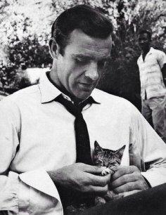 """Sean Connery gioca con un gattino sul set di """"Dr. No"""", 1962"""