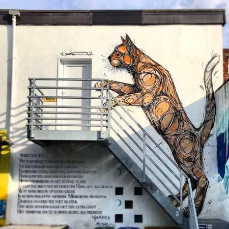 Dzia @ Antwerp, Belgium