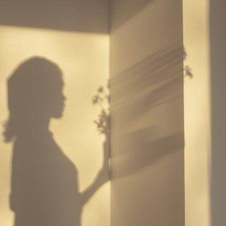 The bright shadow by Marietta Varga
