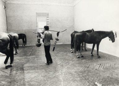 Jannis Kounellis, Cavalli – installazione ambientale La Biennale di Venezia 1976 : Ambiente, partecipazione, strutture culturali Fotografia: Cameraphoto