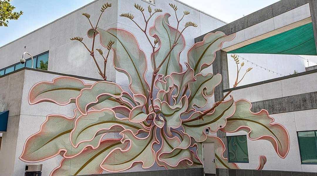 Mona Caron @ San Jose, USA