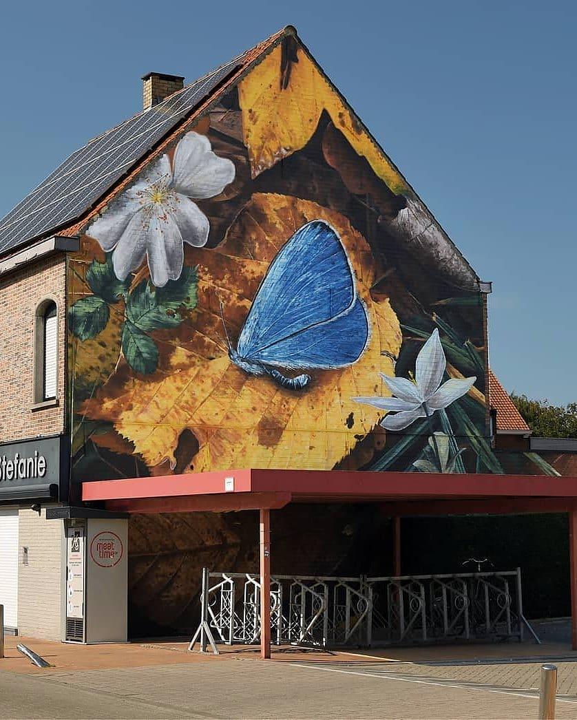 Mantra @ Wevelgem, Belgium