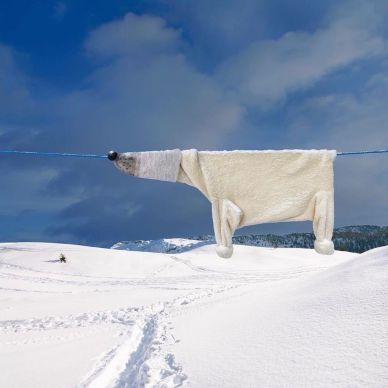 """Nuovo pezzo della serie """"Clothing Line Animals"""" di Helga Stentzel"""
