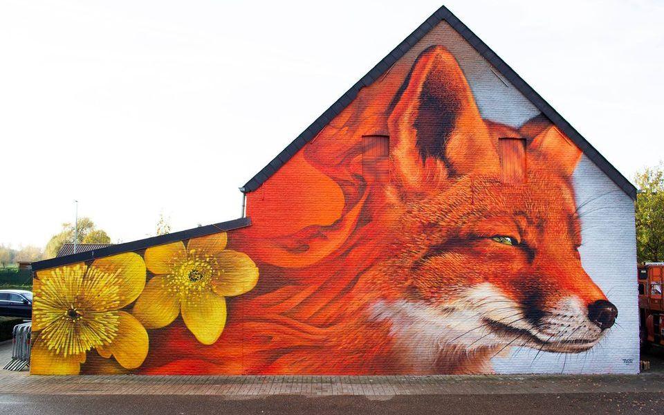 TUZQ @ Scherpenheuvel-Zichem, Belgium