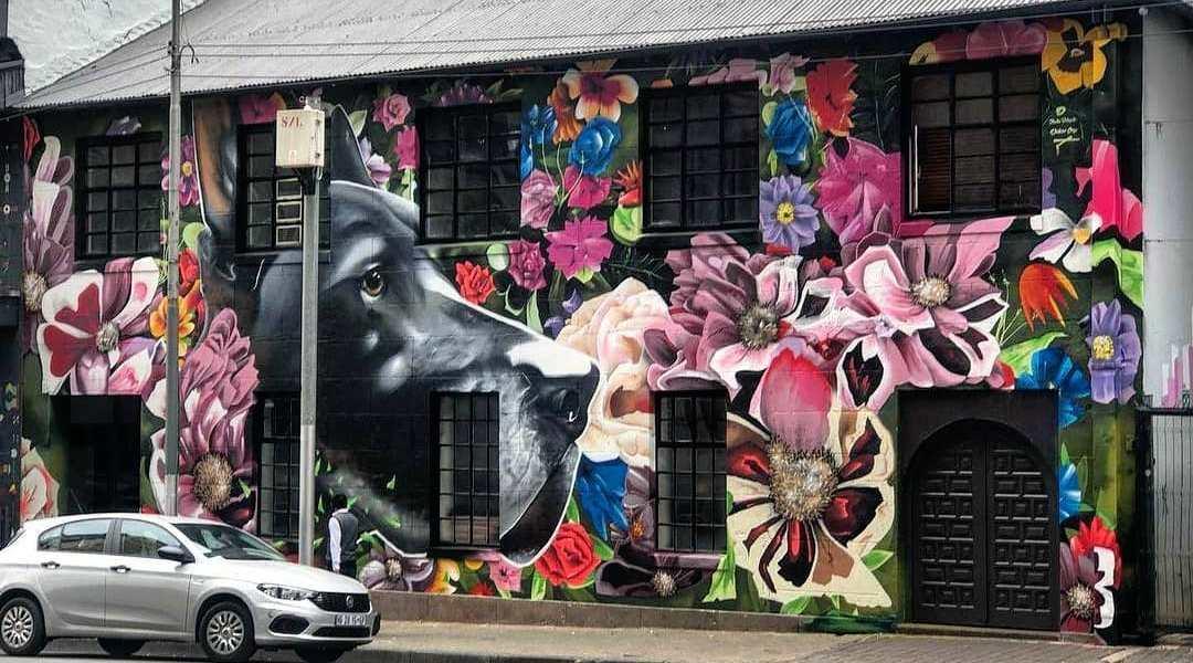 Dekor One @ Johannesburg, South Africa