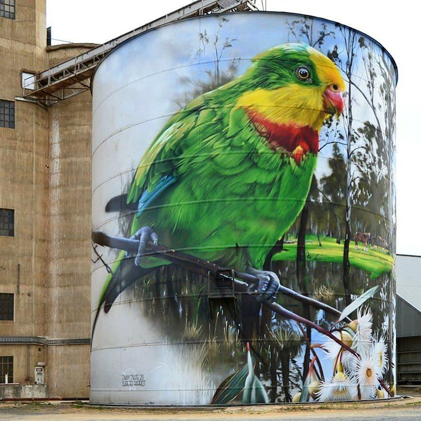 DVate @ Picola, Australia