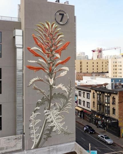 Mona Caron @ San Francisco, USA