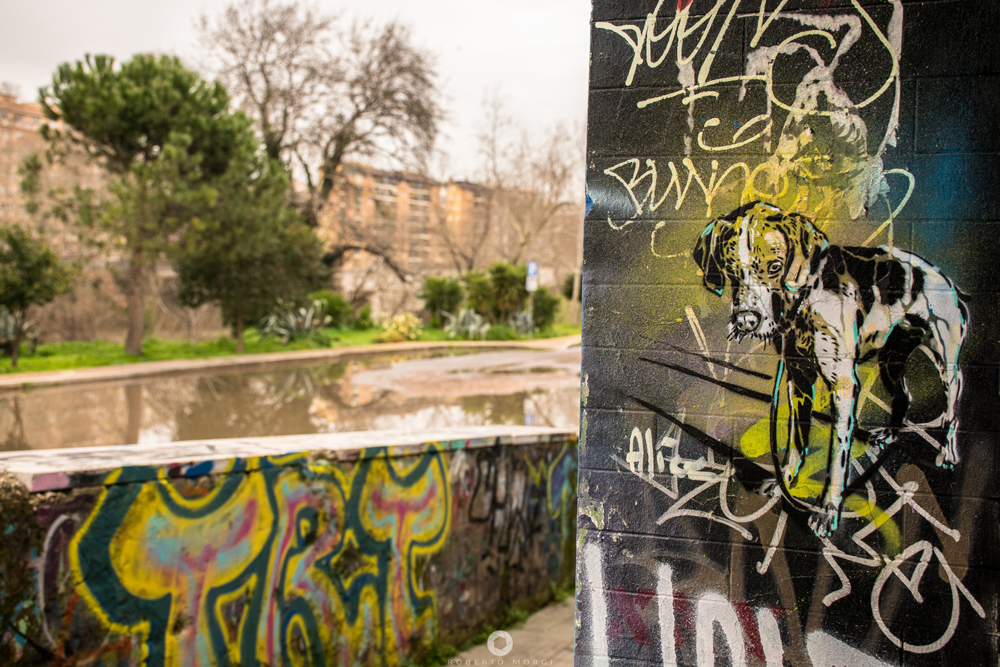 Alice Pasquini @ Rome, Italy. Photo by Roberto Morgi