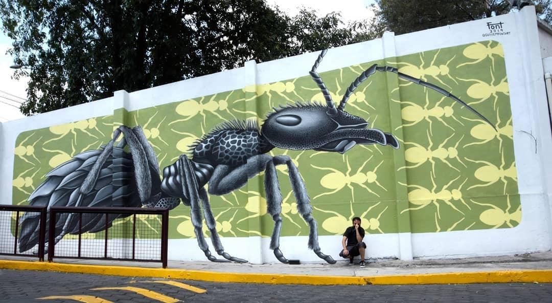 Guillem Font @ Mexico City, Mexico