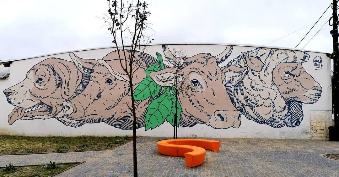 Lucamaleonte @ Ponte de Sor, Portugal