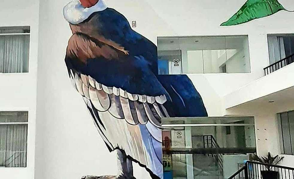 Marko Franco Domenak @ Arequipa, Peru