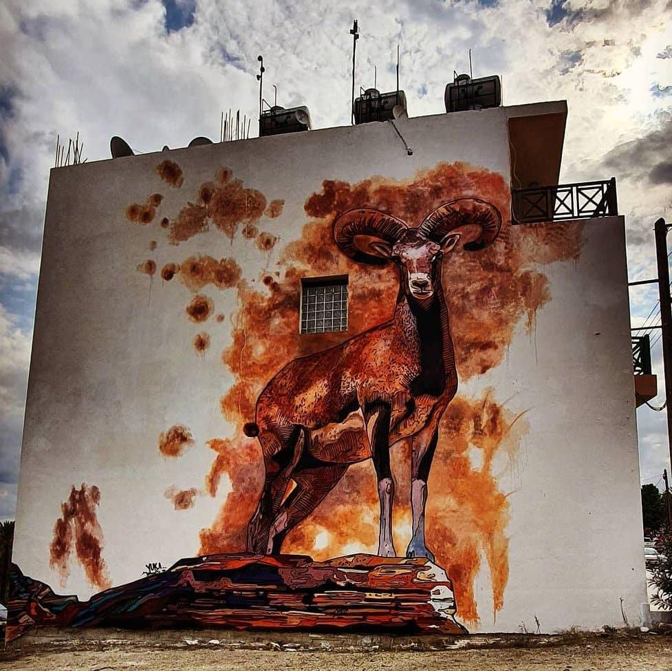 Zed40 @ Lefka, Cyprus