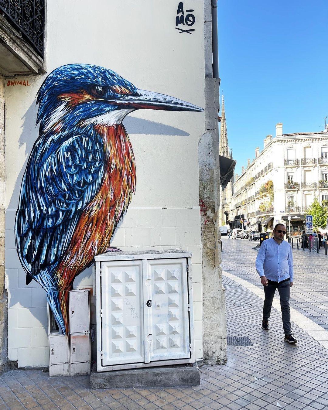 A-MO @ Bordeaux, France