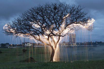 Impermanent Sculptures by Vitor Schietti