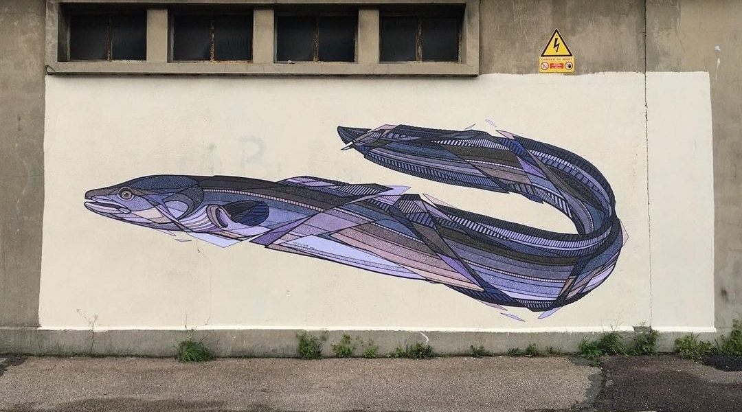 Teuthis @ Le Havre, France
