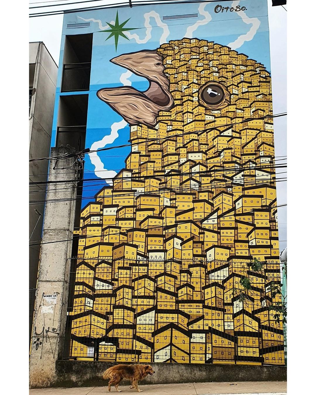 Tiago Ishiyama @ Sao Paulo, Brazil