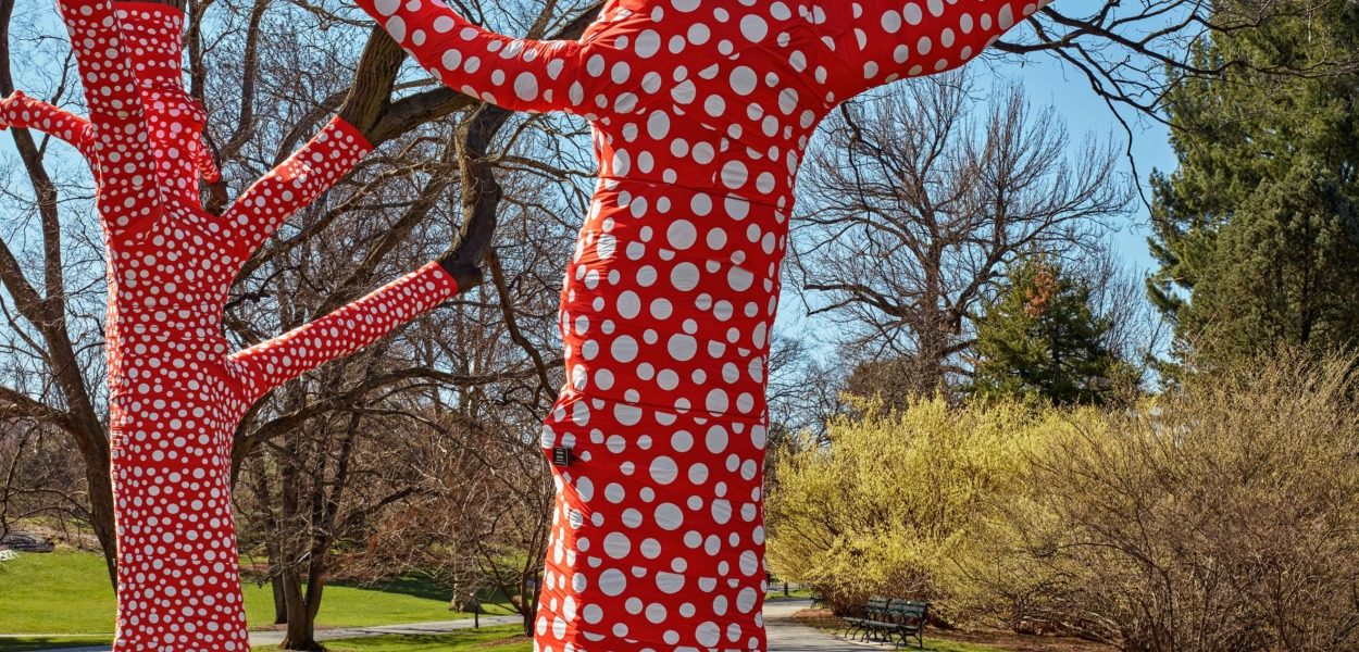 Ascension of Polka Dots on the Trees by Yayoi Kusama @ Botanical Garden, New York
