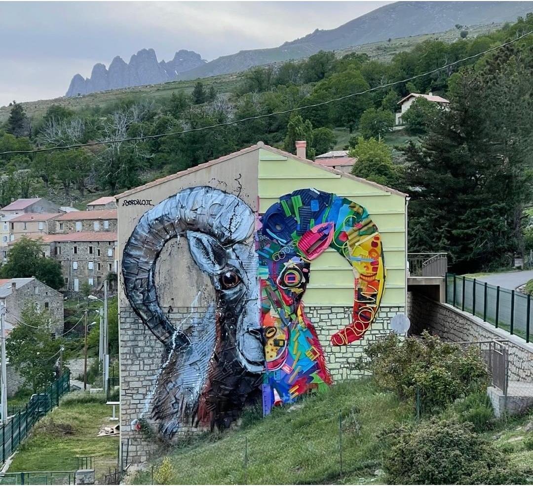 Bordalo II @ Lozzi, Corsica, France