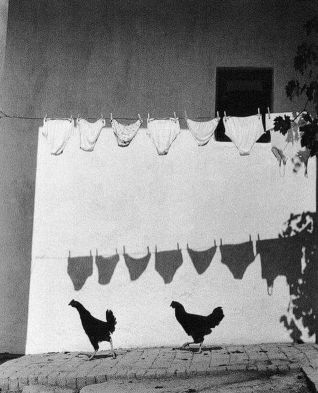 Photography by Bruno Bourel