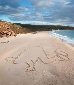Artwork by Ian Mutch in Dunsborough, Australia. Photo by Christian Fletcher