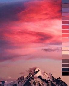 Natural color palettes by Jubilee