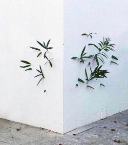 Untitled by Octavi Serra