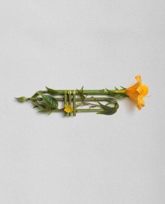 Trumpet by Raku Inoue. From series Garden Symphony