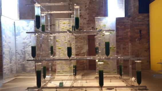 """""""BIT.BIO.BOT"""" di Claudia Pasquero e Marco Poletto alla Biennale Architettura 2021"""