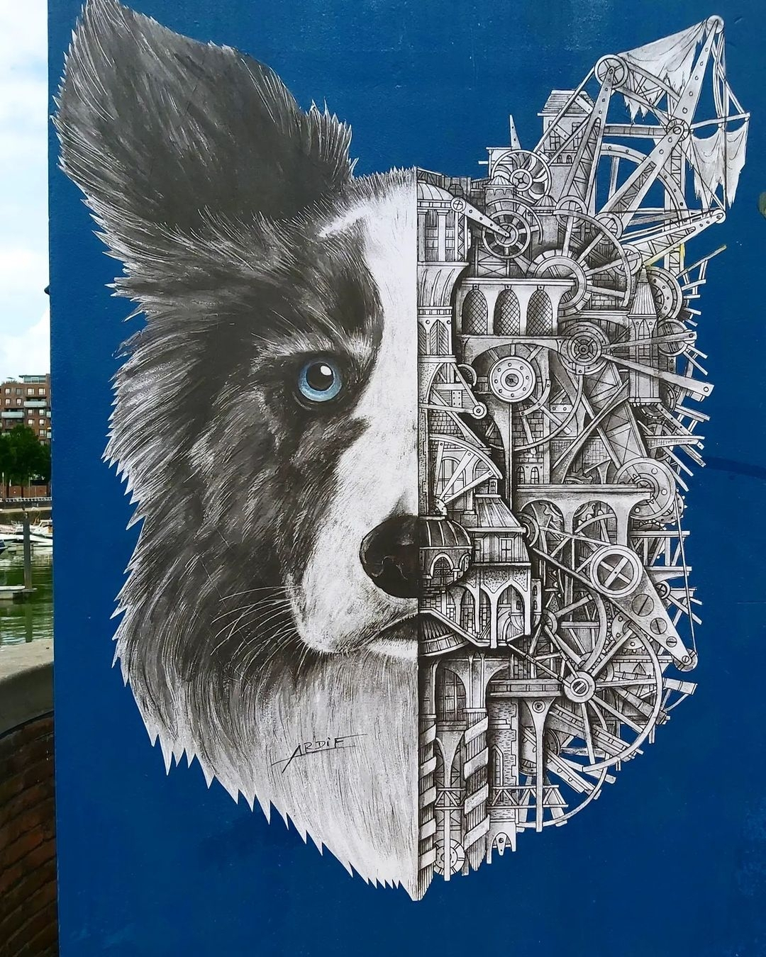 Ardif @ Rotterdam, Netherlands