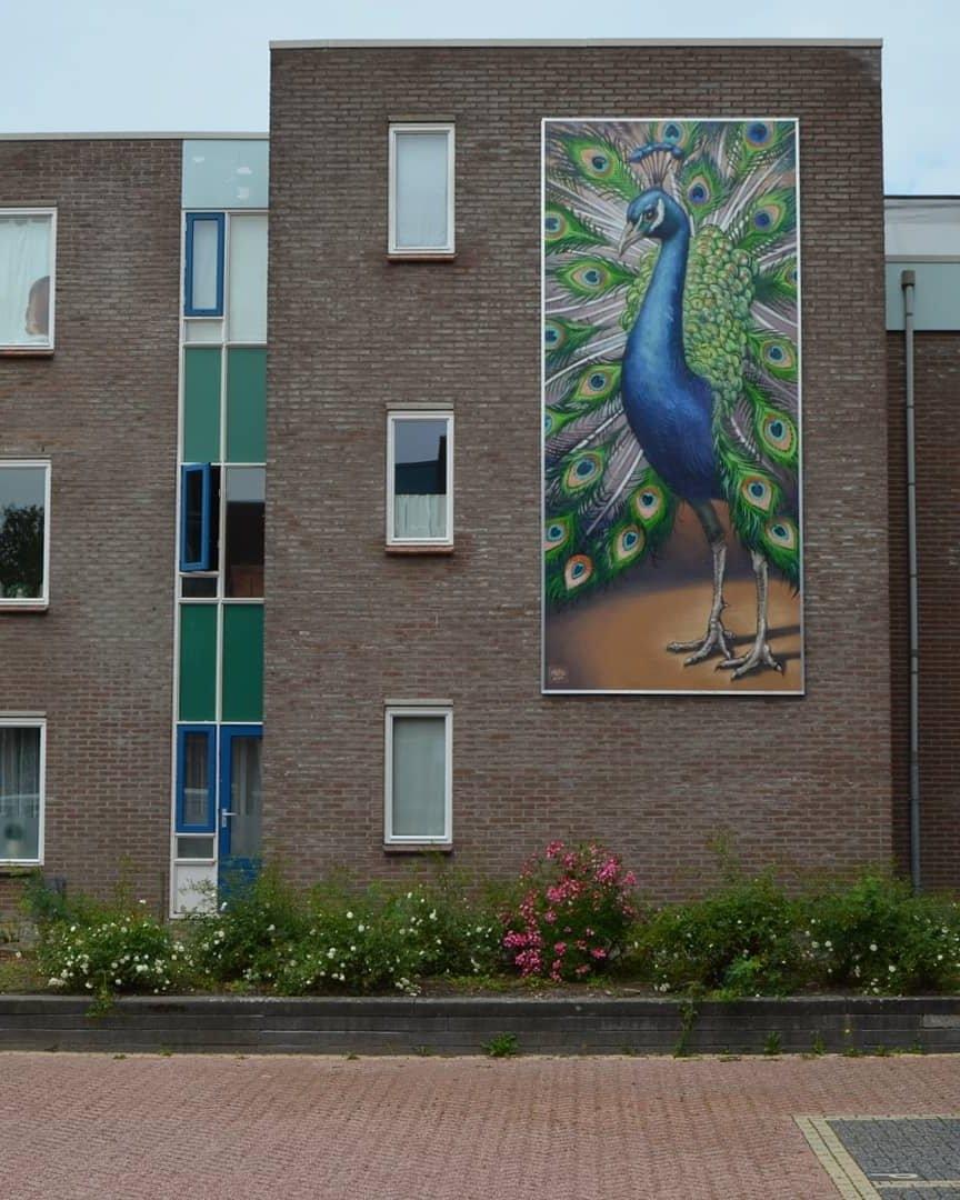 Michel Velt @ Groningen, Netherlands