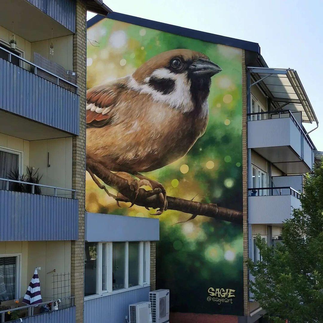 Sagie @ Skoghall, Sweden