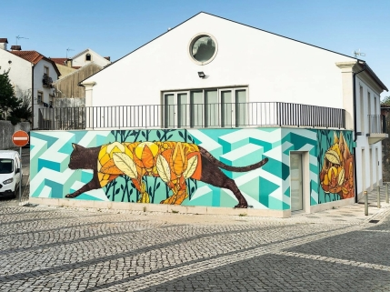 Gonçalo Ribeiro @ Miranda do Corvo, Portugal